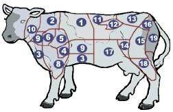 חלקי הפרה